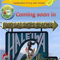 haleiwa sign  100